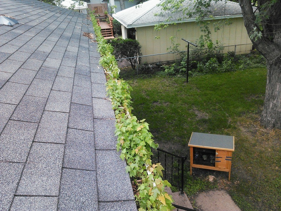 Crystal MN Gutter Cleaning